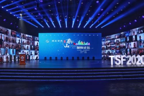 2020青年学者泰山国际论坛在线举行